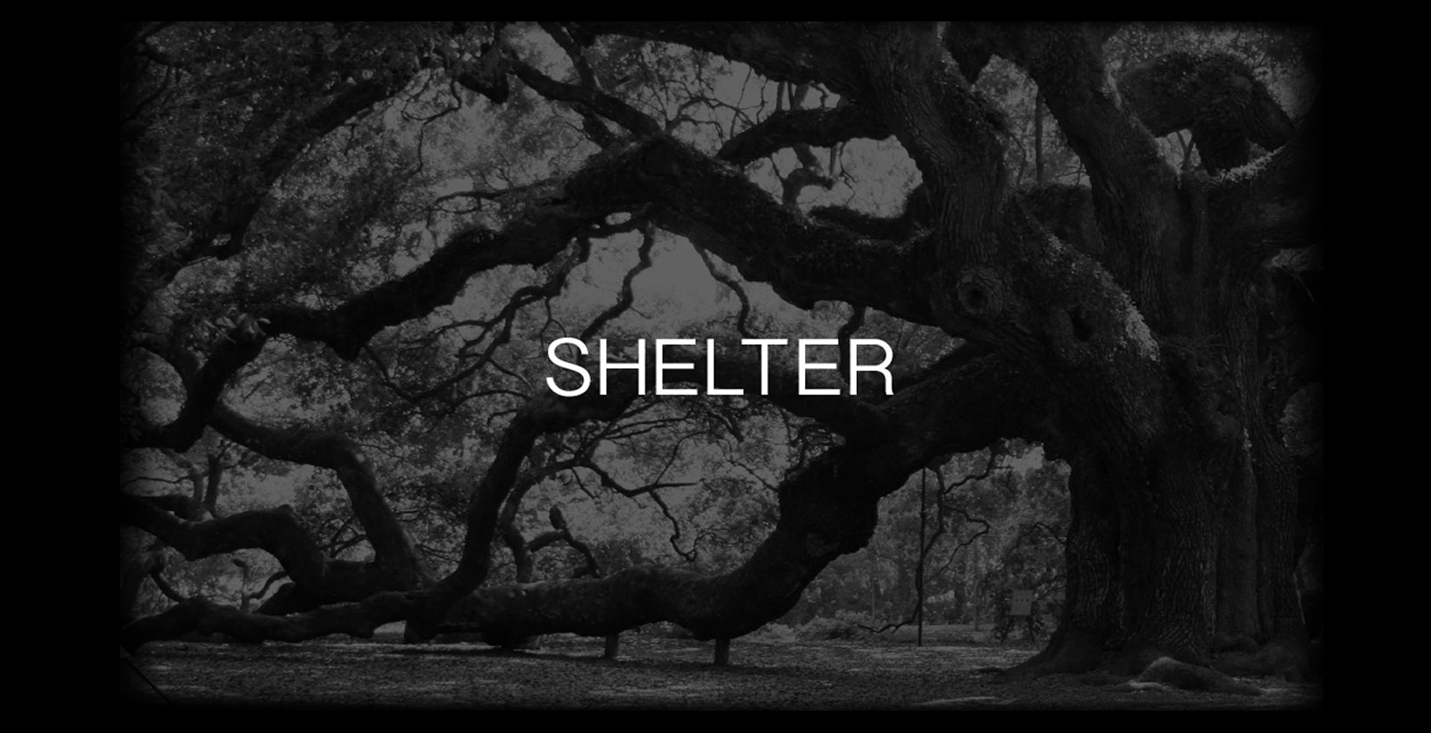 shelter-1600px_wide